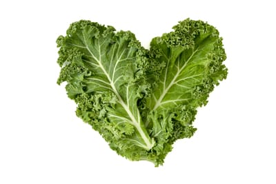 Kale for cavies