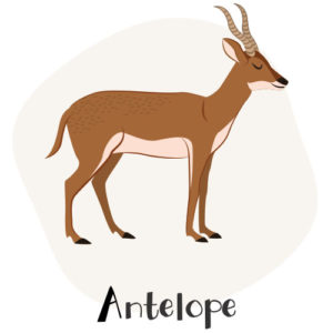 Antelope and other animals that start with A