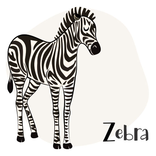 Animals that start with Z