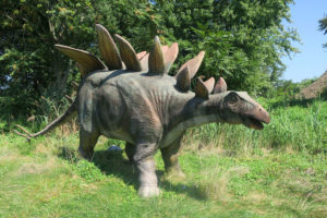 A physical recreation of what a Stegosaurus might look like